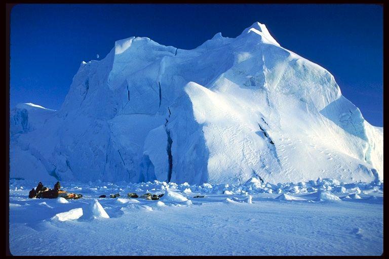 Арктика природа
