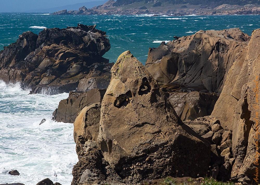 Калифорнийское побережье во всей красе!