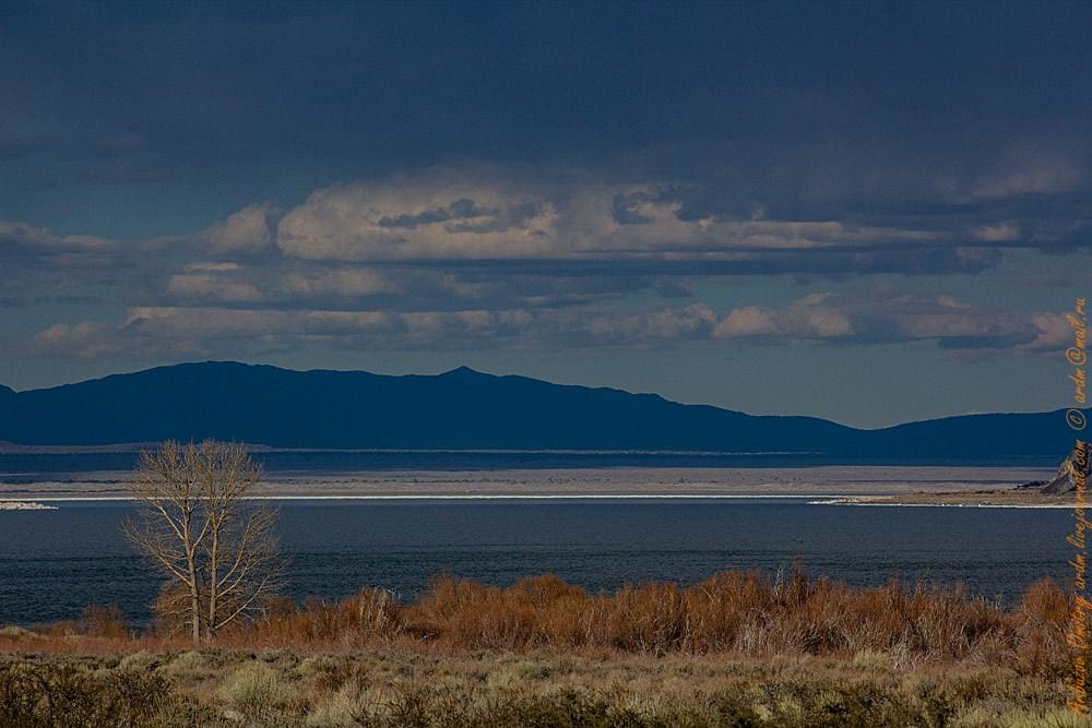 Моно лейк считается одно из самых приятных мест для наблюдения за звёздным небом. Полное отсутствие электричества и широкий обзор небосвода
