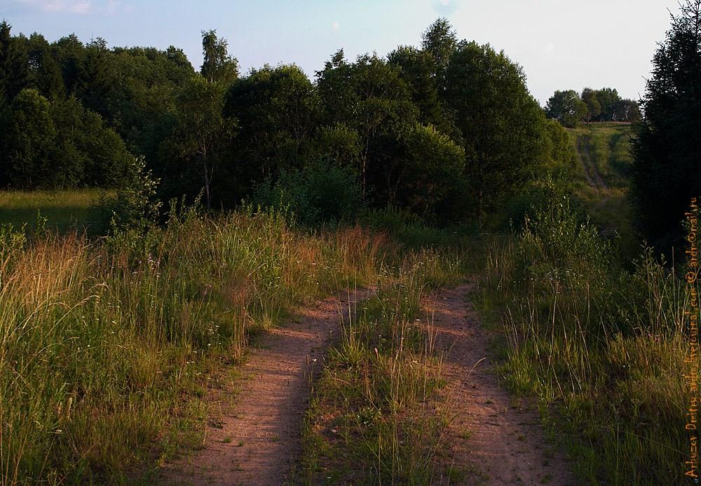 Дороги среди бывших деревень