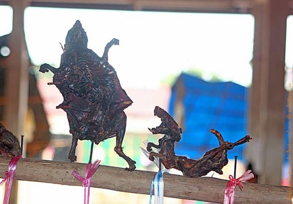 Сушёные крыски в пляске святого Витта