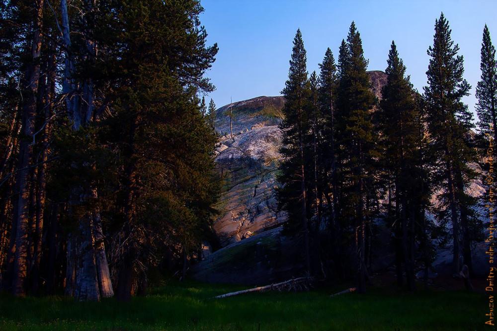 А где-то лес остался за горами... эхх