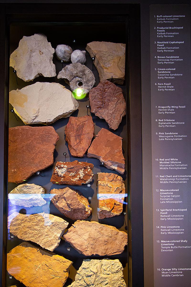 Горные породы и дохлости Большого каньона
