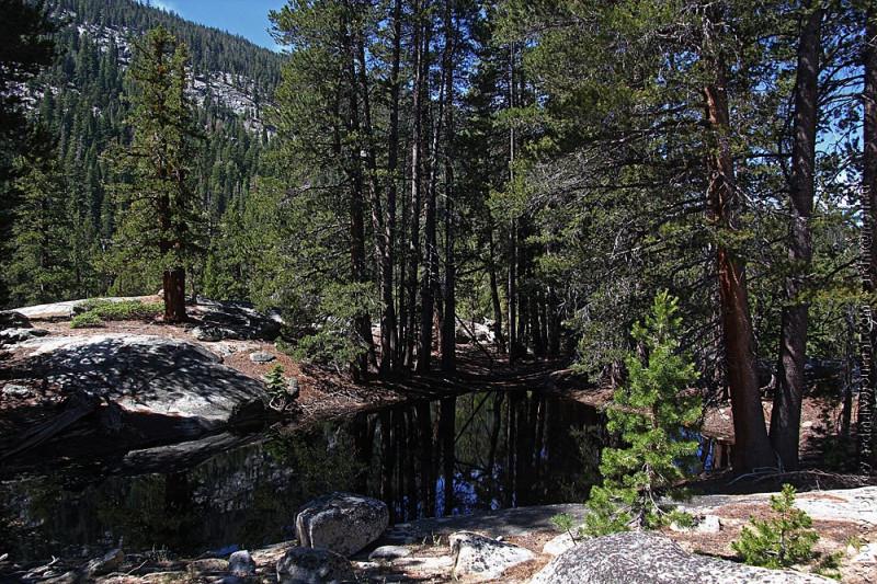 Природа среди гранитных скал долины Mono creek