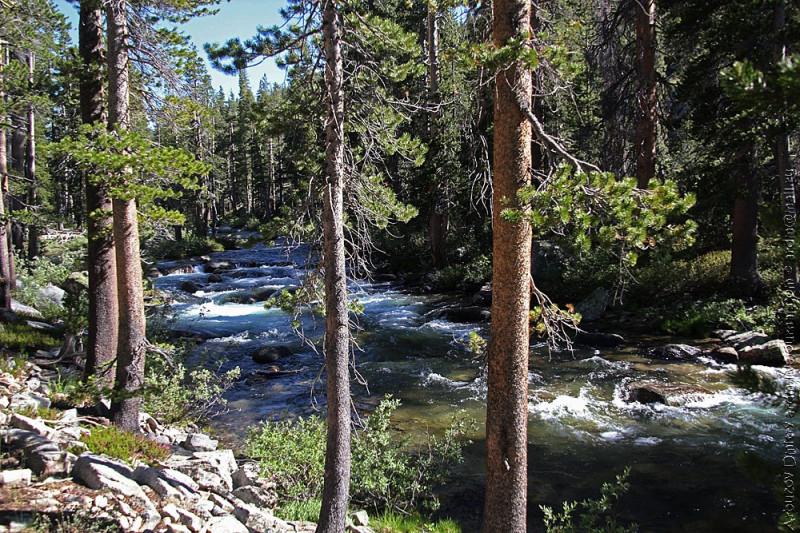 долина Bear creek