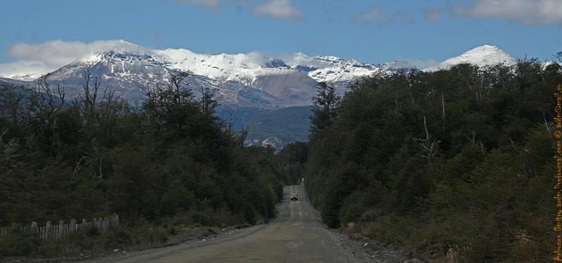 Дорога на Сьерра Кастилио. Деревья - ужный бук