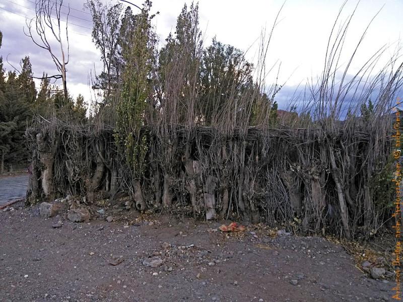 Традиционный забор