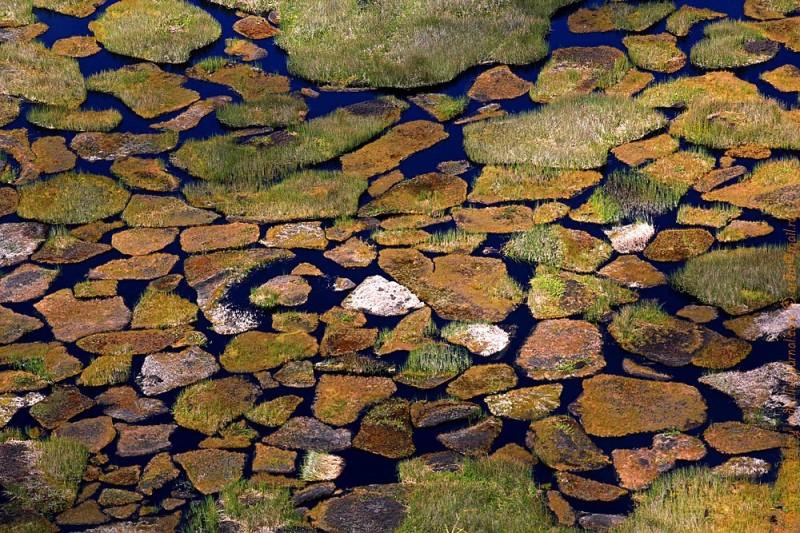 Уникальное скопление пресной воды на затерянном среди солёных вод острове