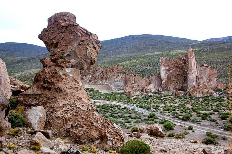 Боливия, высокогорье пустыни Силоли, как говорится - лес кругом, и это правда!