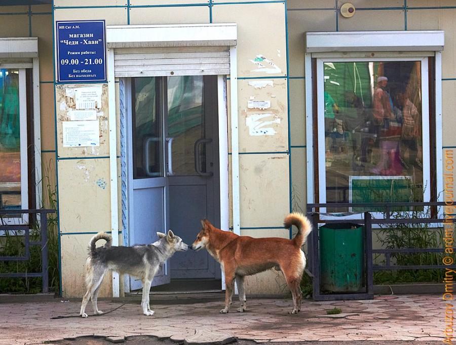 Тоора-Хем - врата в Тоджу