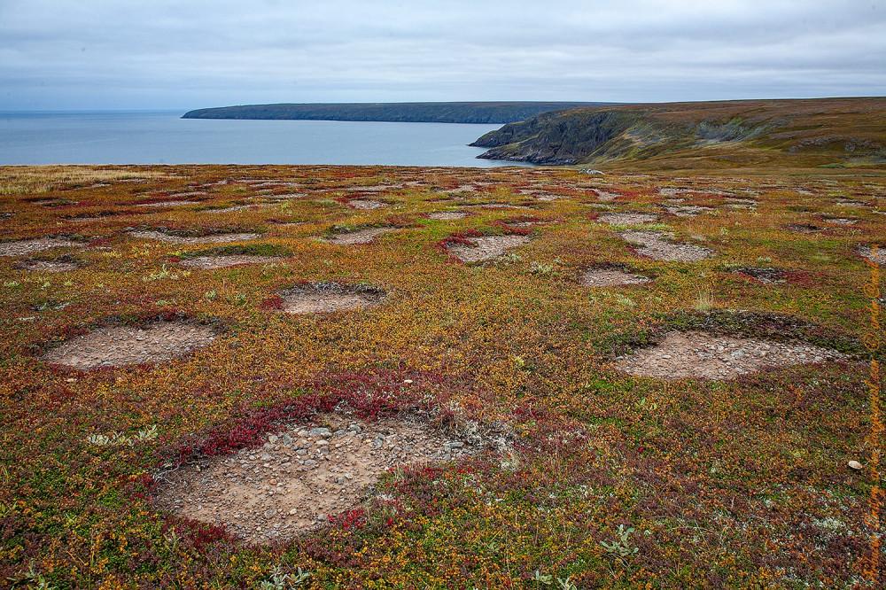 Каверны от ветра - специфика прибрежного ландшафта Кольской тундры