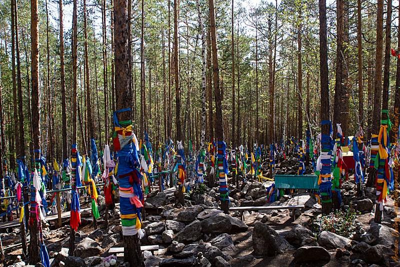 Святилище - экологическая катастрофа