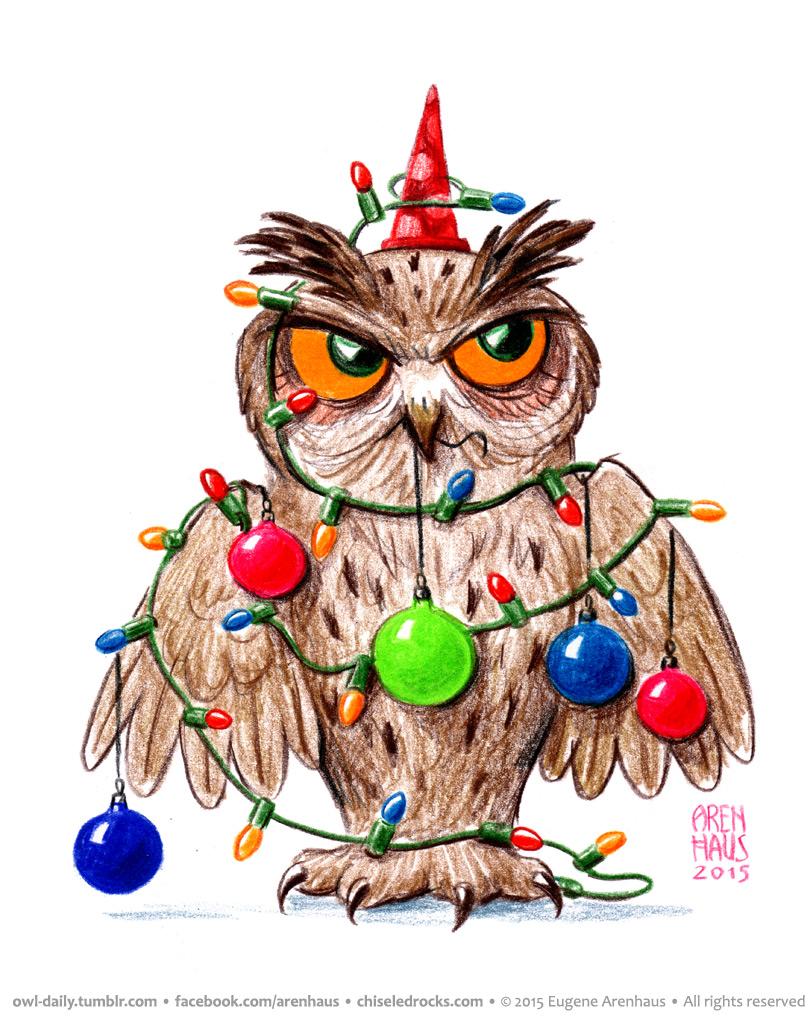 owl-daily-eugene-arenhaus-00378