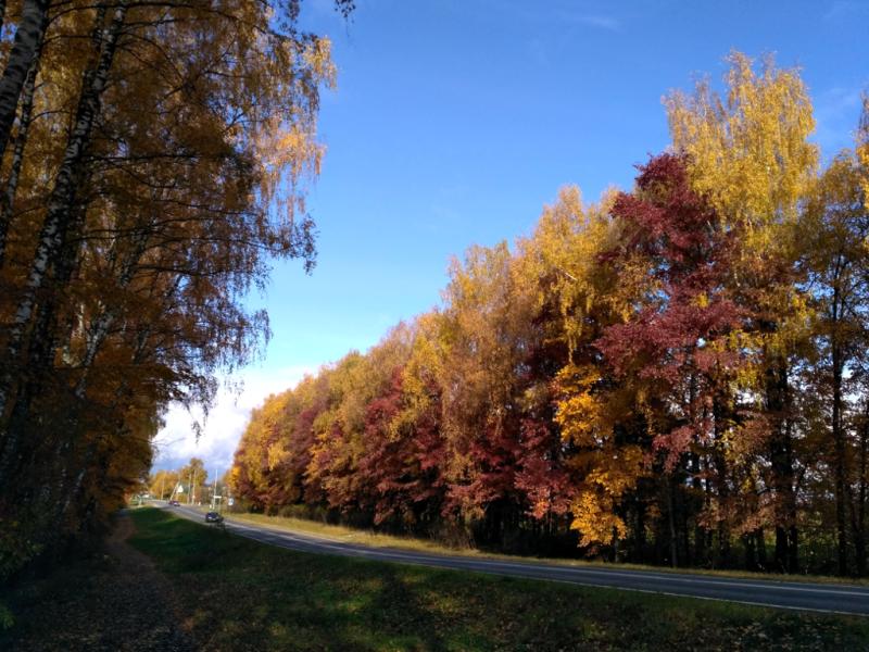 На въезде в Семеновское