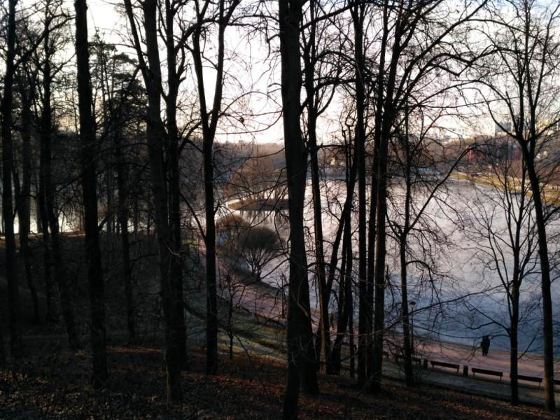 Вид на Верхний Царицынский пруд от Малого дворца