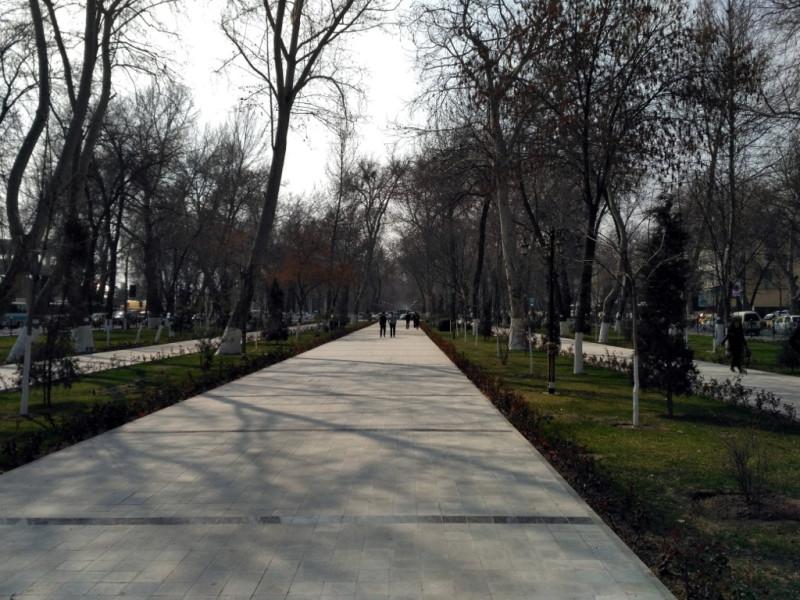 Одна из главных улиц города – Университетский проспект