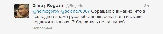 рогозин4