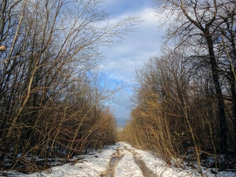 Дорога в Каменномостский
