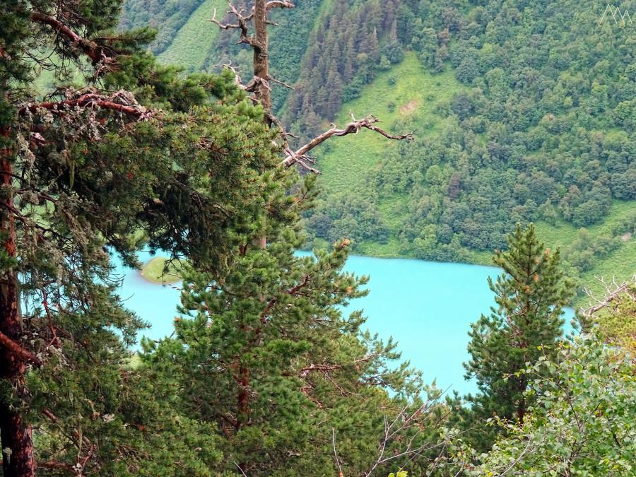 33. Озеро Ачипста сквозь сосны.JPG