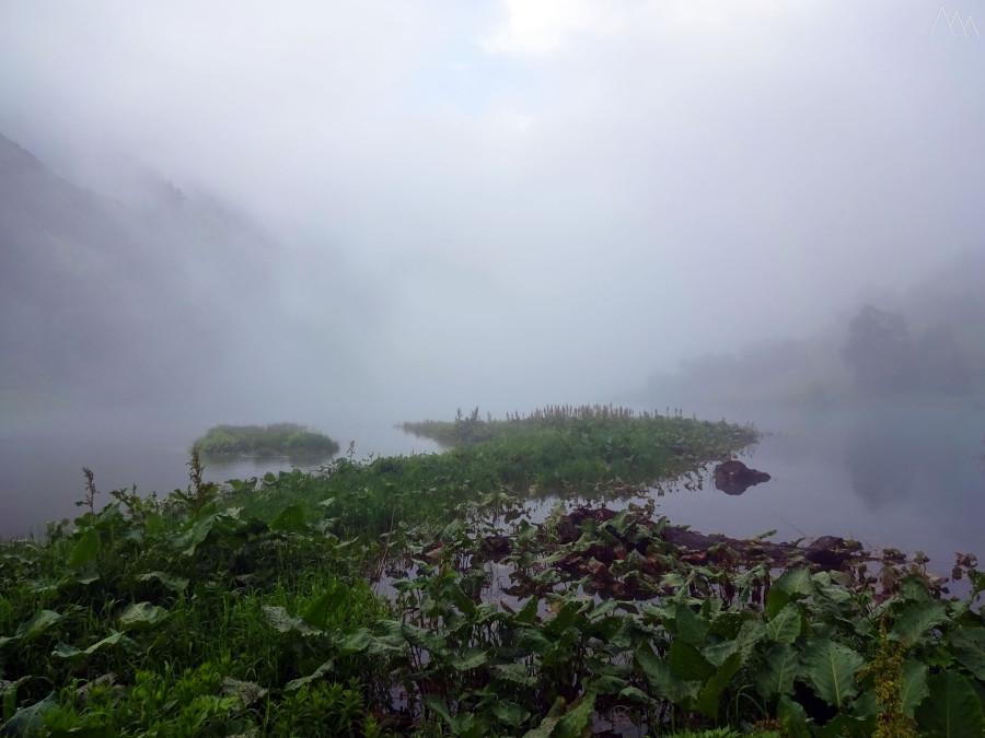 35. Туман.JPG