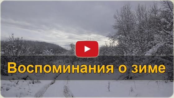 Воспоминания о зиме - январский лес VIDEO