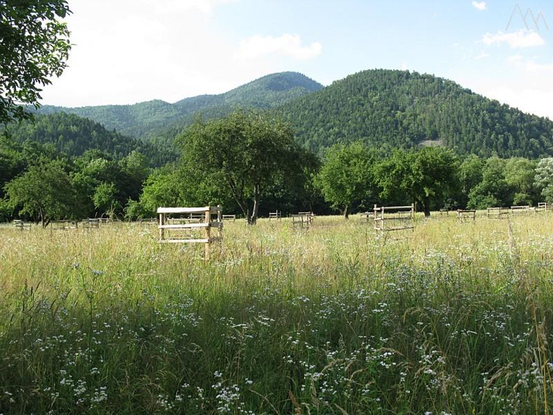 Поселок Гузерипль, горы