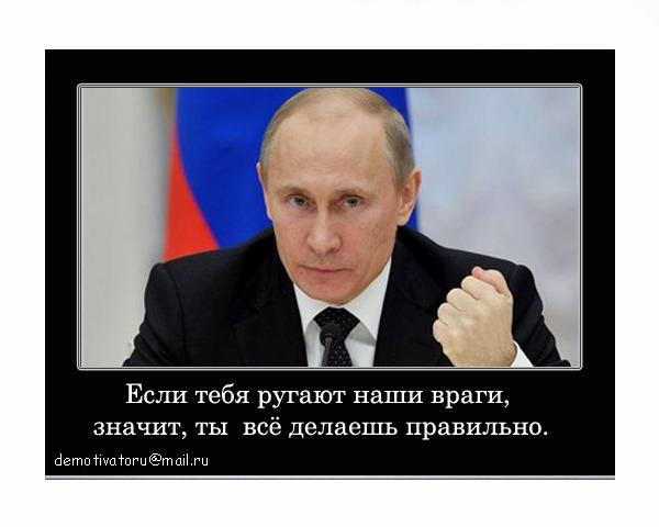 путинвв