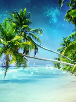 dream_beach-wide_Arjun-Kanuri