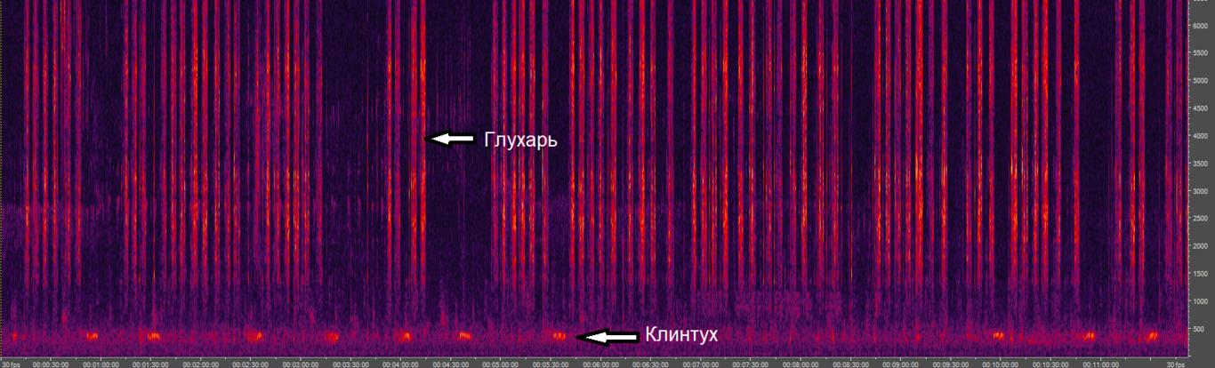 imgonline-com-ua-Resize-jckn6LBI9Y8T
