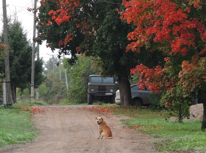 Осень в Холме