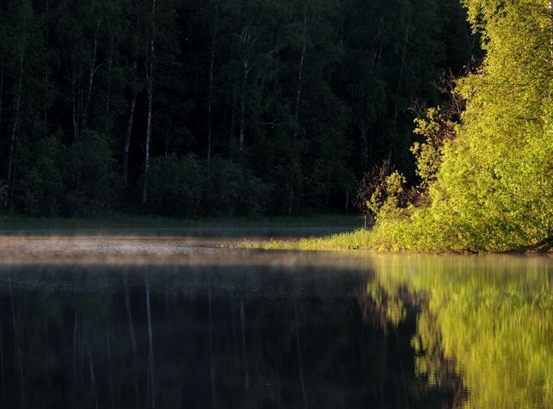 Речка Мухринская