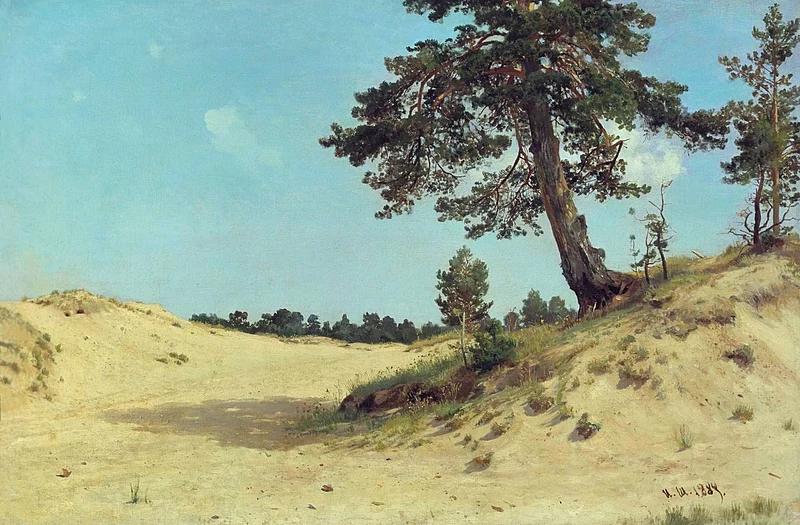 """И. Шишкин. """"Сосна на песке"""". 1884"""