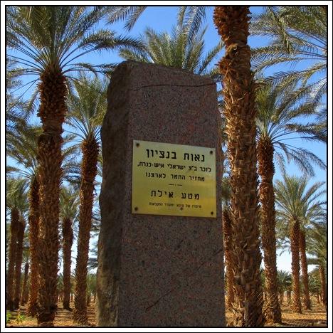 11-BENZION_Kibbutz_Eilot.jpg