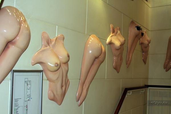 Порно музеи фото