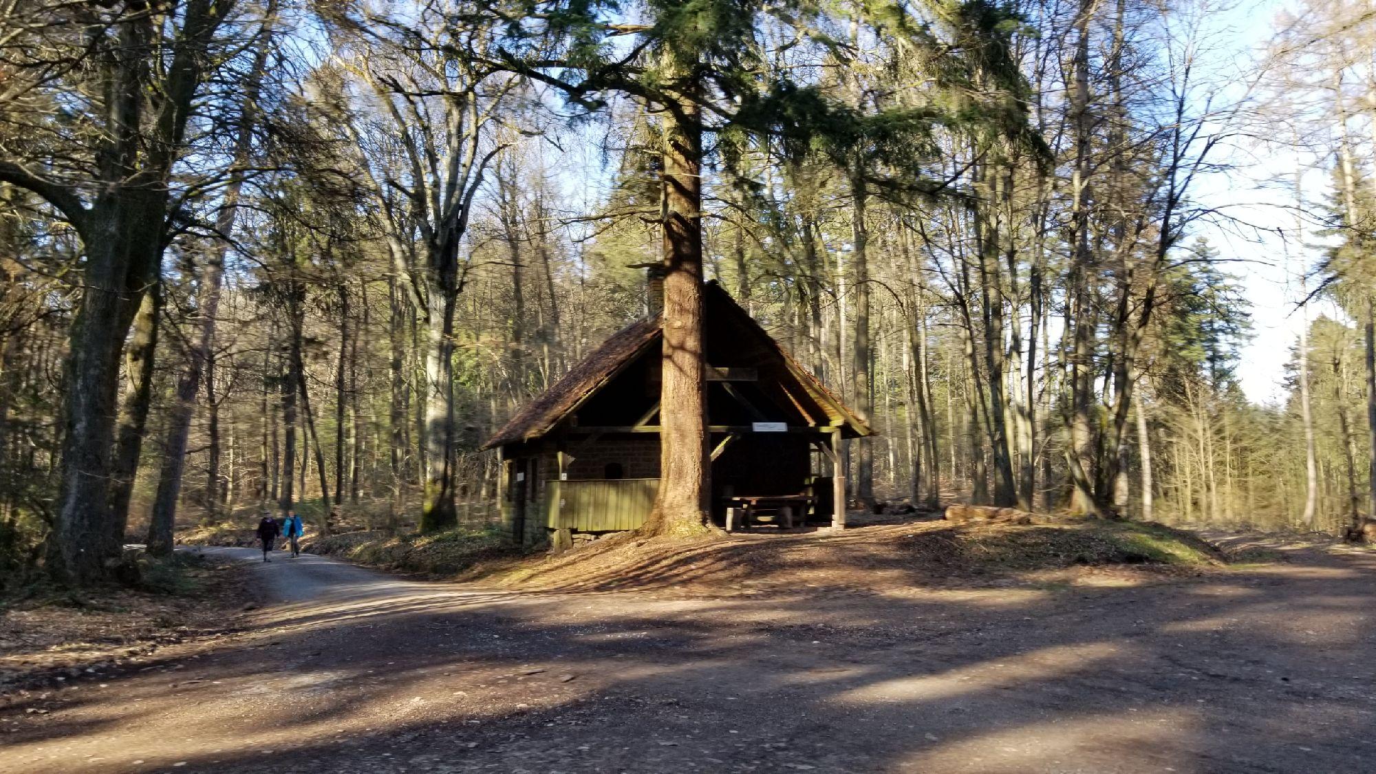 Каталсо по лесам - горам. Вот избушка, типичная. Внутри печка даже есть, но все закрыто, только лесникам можно внутри аобухать.