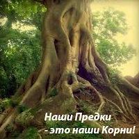 10. корни