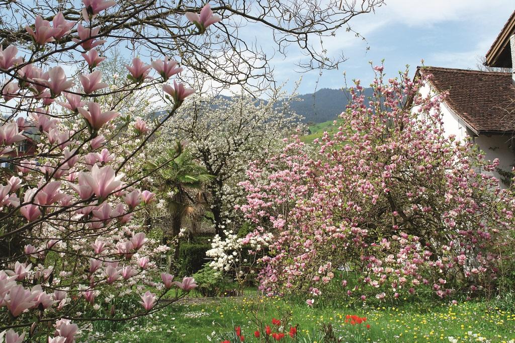 1_Gartenreisefuehrer_Schweiz_3-1800x1200
