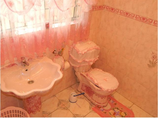 Worst Design Bathroom4