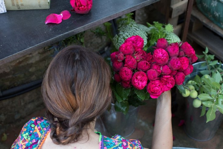 4_gang-and-the-wool-roses-gardenista
