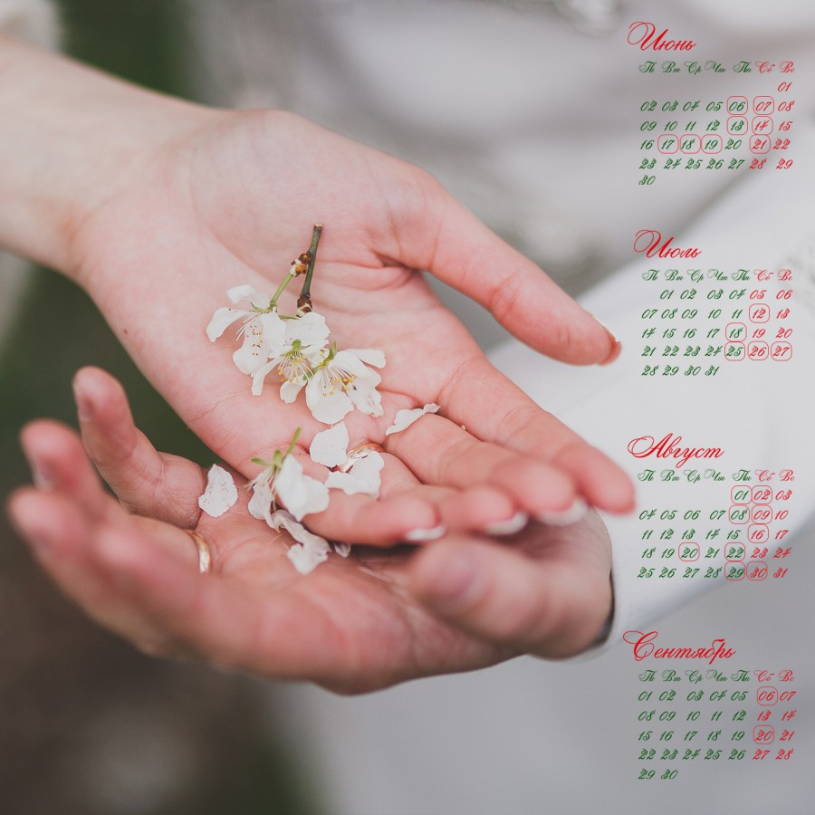 календарь квадрат руки