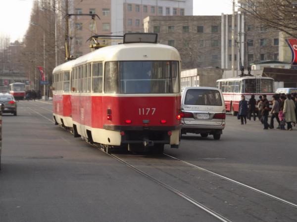 bus64