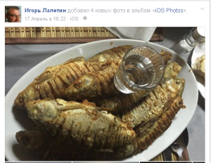 (15)_Игорь_Лалетин_-_2015-05-02_20.20.47
