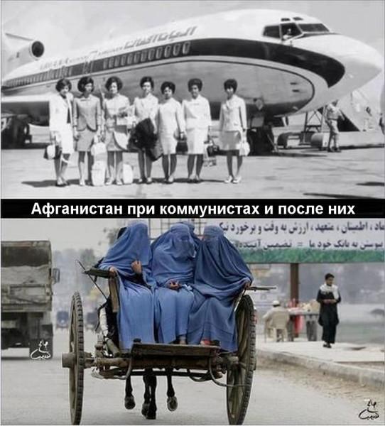 https://ic.pics.livejournal.com/artemov_aleks/17842262/103440/103440_600.jpg