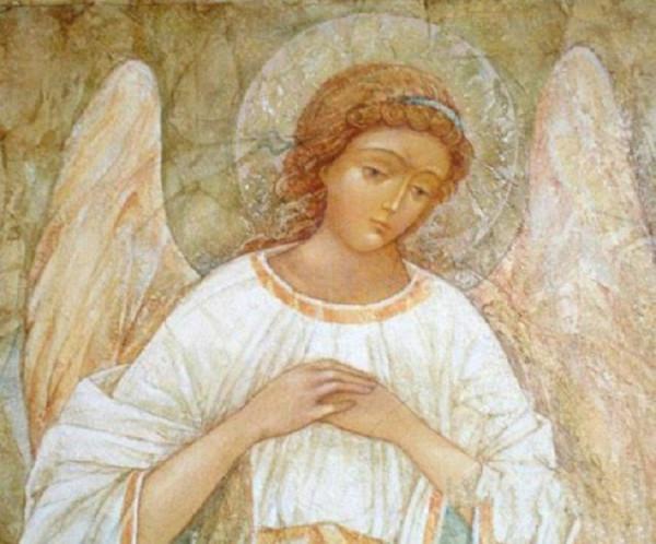 angel-hran