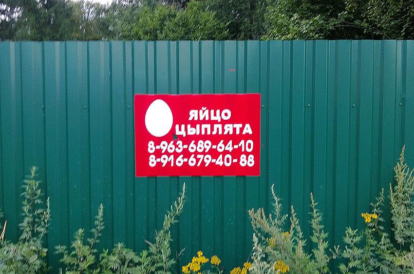 Яйцо МТС