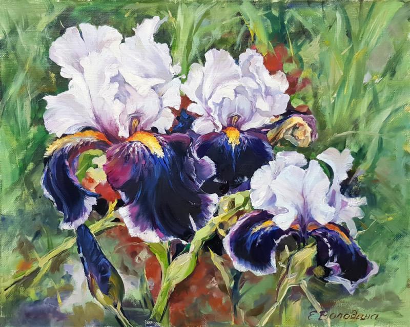 живопись маслом  цветы