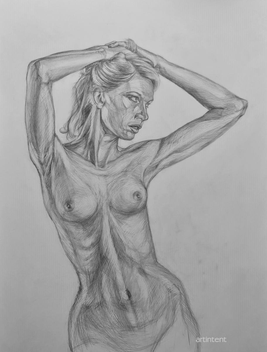 Артинтент  - рисование натуры