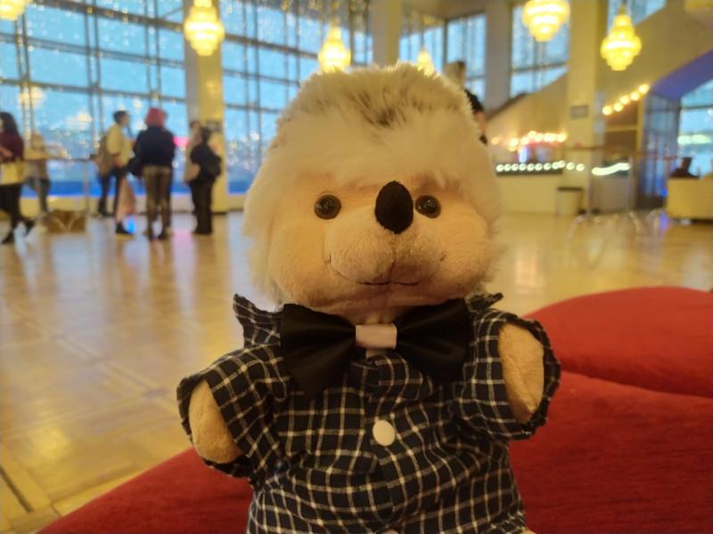 С нетерпением и в ожидании начала рок-оперы КарамазоВЫ, погулял по холлу концертного зала.
