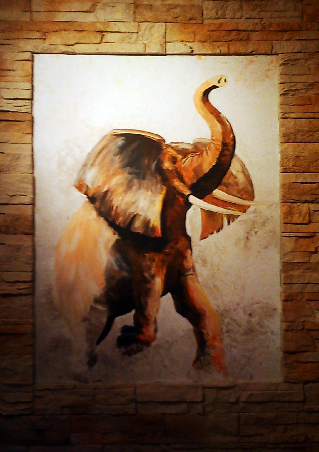 ElephantFin