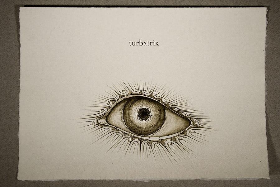 3-Turbatrix